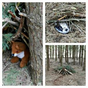 animal-dens